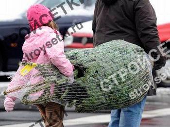 Упаковка для елок фото