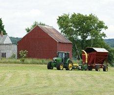 Дачное, фермерское и сельское хозяйство